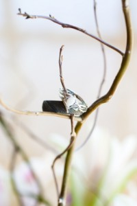 Wedding rings on a branch for a green wedding